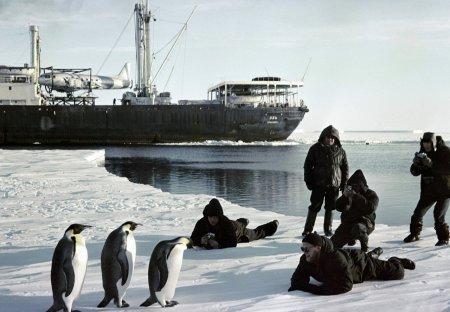 24-я украинская антарктическая экспедиция отправлена из Чили в Украину