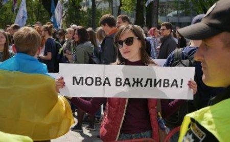 Конституционный суд признал конституционным языковой закон